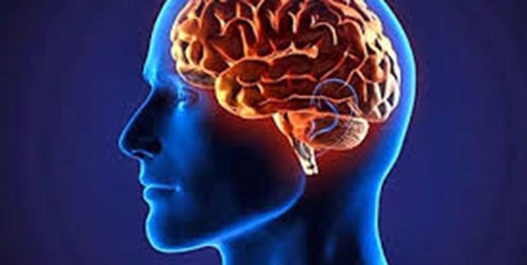 مغز را با این روش صحیح و سلامت نگه دارید